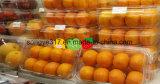 Desmarque a caixa de embalagem em blister Pet das frutas