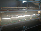 3 Jahre der Garantie-50W 100W 150W Philips SMD bildeten LED lineares hohes Bucht-Licht