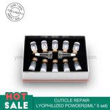 Revitaliser la poudre lyophilisée par réparation réglée de cuticle de soins de la peau de fond de teint crème