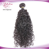Cheveu bouclé brésilien non transformé de cheveu bouclé cuticle normale crue d'extensions de pleine