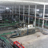 Projeto profissional do Turnkey da produção do suco