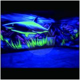어두운 못 반짝임 훈장에 있는 야광운 분말 놀을 입히는 놀 청록색 빛 인광체 분말 안료 페인트
