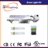 Dual 315W 630W double sortie CMH Grow Light Lastre