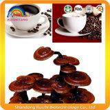건강 Carerz00를 위한 Ganoderma 블랙 커피