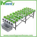 Piccolo sistema di coltura idroponica della casa e del giardino di Nft