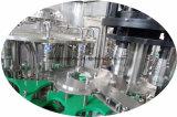 Máquina de empacotamento de engarrafamento de enchimento da água do líquido do preço razoável de China para a venda
