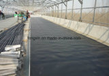 Pellicola impermeabile di Geomembrane dell'HDPE di ingegneria sotterranea