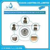 316stainless 강철 샘 수중 LED 빛 (수영장과 샘)