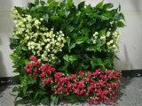 Decoración de la cubierta de la pared de las flores artificiales de las nuevas plantas del diseño