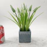 人工的な装飾のホタルブクロの鉢植えなプラント