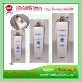 De Navulbare Batterij van Ni-CD van de Alkalische Batterij Ni-CD Gn60