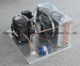 Double réfrigérateur en verre de boisson de refroidissement à l'air de porte