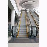 Escalator semi extérieur avec la largeur d'opération de 1000mm
