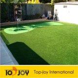 Jardín de hierba verde de plástico (TJ-1102)