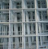 熱い浸された電流を通された鋼鉄網(SP-002)