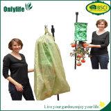Couverture agricole résistante UV de protection des plantes de jardin de qualité d'Onlylife