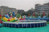 Raggruppamento in superficie della piscina