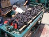 Полировщик сои полируя машины фасоли (5PJ-5)