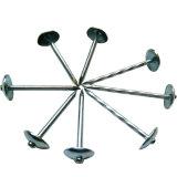 Parapluie de toiture en acier galvanisé des clous pour prix d'usine