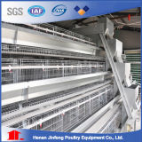 Poultry Equipment and Cage Poultry Farm au Nigeria