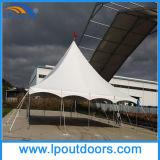 Tenda d'acciaio esterna di vendita calda dell'alto picco di 40X40'Palo