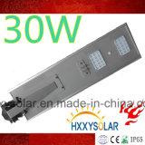 30W économiseur d'énergie tout dans un réverbère solaire de DEL