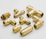 真鍮の圧縮の管継手、男性の肘の黄銅の接合箇所