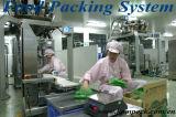 Máquina de empacotamento industrial automática dos encaixes
