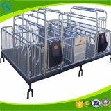 Embalaje de parto del tubo de acero de la galvanización para los cerdos