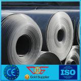 HDPE di plastica Geomembrane della pellicola del costruttore dell'inclinazione concreta
