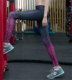 Großhandelsform-Drucken-schnelle trocknende Yoga-Gamaschen für Frauen