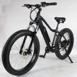 750W脂肪質のタイヤの電気マウンテンバイク