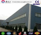 Taller del acero estructural del metal (SSW-659)