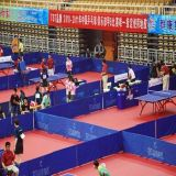 PVC Sports Roll Flooring de Cheap Indoor de qualité pour Table Tennis