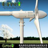 Piccola turbina di vento orizzontale del mulino a vento 0.6kw con Ce
