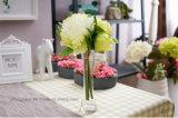 Высокорослые ясные стеклянные вазы; Ясные вазы цилиндра