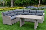Outdoor meubles de jardin en rotin canapé ensemble de la table de coupe