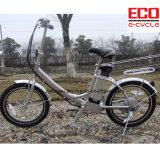 リチウム電池およびFoldable電気自転車