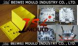 Moulage automatique en plastique de cadre de batterie d'injection d'OEM Custome