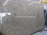 Kerstman Cecilia Dark Granite Slab voor Countertop (yY-Kerstman het licht van Cecilia)
