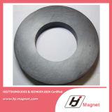 Kundenspezifisches Fabrik-Ring-Ferrit für Bewegungsmagneten