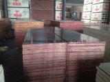 Tamanho Shuttering da madeira compensada 1220*2440mm de Brown