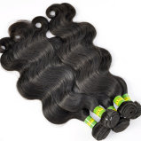 Belles extensions brésiliennes de cheveux humains de Vierge de produits capillaires