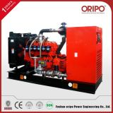 generador de reserva residencial 30kVA con el regulador del alternador