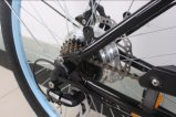 En15194 Aprroved 36V Lithium-Batterie LCD-Bildschirmanzeige-elektrisches Fahrrad Pedelec, Mann-Strand-Kreuzer