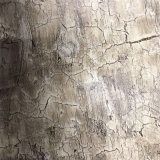 Matériau en cuir de liège en bois-grain pour chaussure (HS-M308)