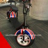 アルミニウム車輪が付いている2017の脂肪タイヤ都市ココヤシの電気スクーター