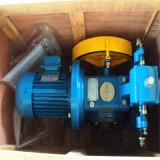 Motore Gearless a magnete permanente della macchina della trazione per gli elevatori