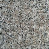 Pietra Polished naturale del granito