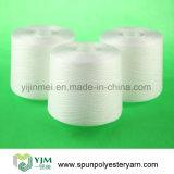 Breve filato filato 502 della fibra di graffetta poliestere